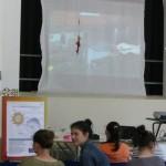 Proiezione piegaggio lamelle parabola