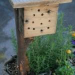 orto in sacco - casa per api solitarie