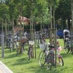 Viva la bici