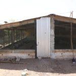 Edificio2 per altri polli